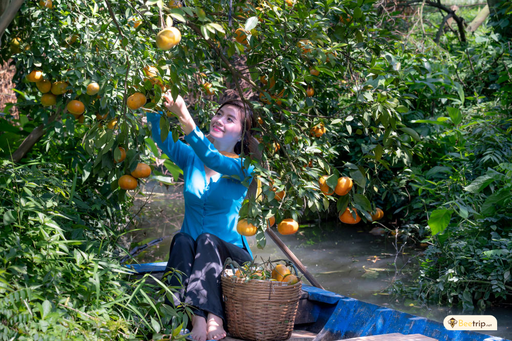 tropical-orchards-mekong-delta